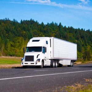 How Do You Ship Fresh Food and Meat in Bulk
