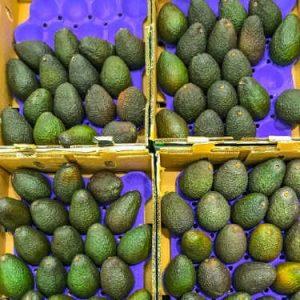 Keeping Avocados Fresh During Shipping