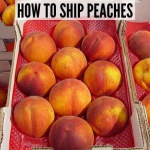 HOW TO SHIP PEACHES