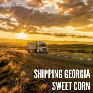 Shipping Georgia Sweet Corn