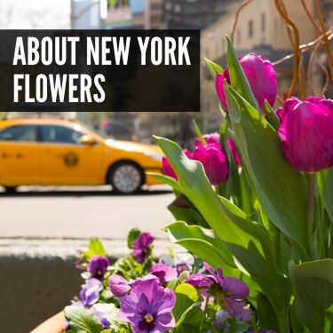 About New York Flowers