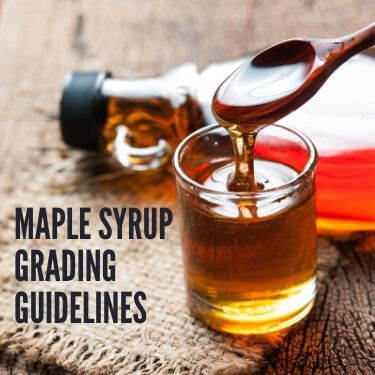 Maple Syrup Grading Guidelines