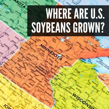 Where are U.S. Soybeans Grown
