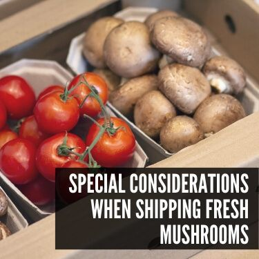 Special Considerations when Shipping Fresh Mushrooms
