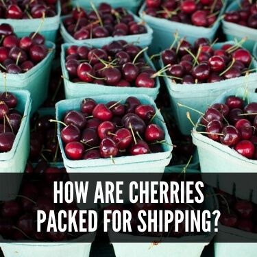 How are Cherries Packed for Shipping