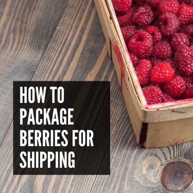 How to Package Berries for Shipping