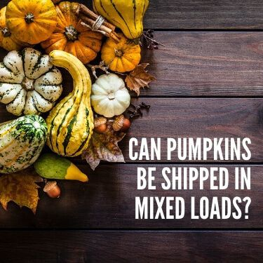 Can Pumpkins be Shipped in Mixed Loads