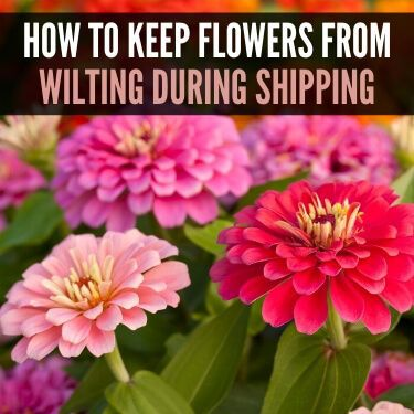 How to Keep Flowers from Wilting during Shipping