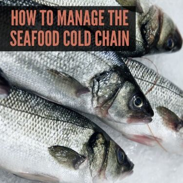 How to Manage the Seafood Cold Chain