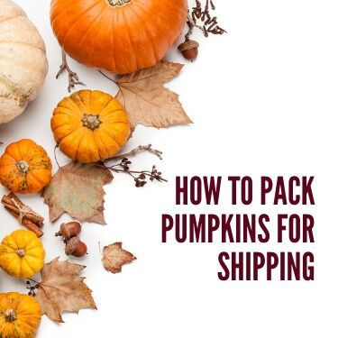 How to Pack Pumpkins for Shipping