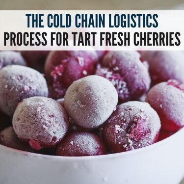 The Cold Chain Logistics Process for Tart Fresh Cherries