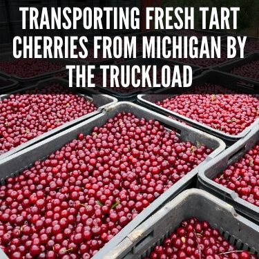 Transporting Fresh Tart Cherries from Michigan by the Truckload