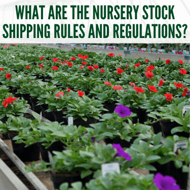 What-Are-The-Nursery-Stock-Shipping-Rules-and-Regulations