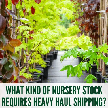 What Kind of Nursery Stock Requires Heavy Haul Shipping