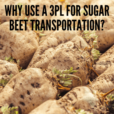 Why Use a 3PL for Sugar Beet Transportation