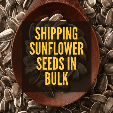 Shipping Sunflower Seeds in Bulk