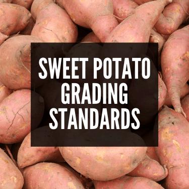 Sweet Potato Grading Standards