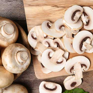 Freight Shipping from Pennsylvania to Texas Mushrooms