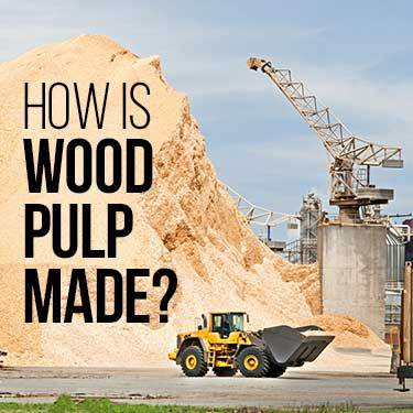 how-is-wood-pulp-made